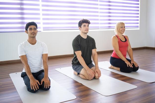 Poważni początkujący siedzący w seiza pozują na matach na zajęciach jogi