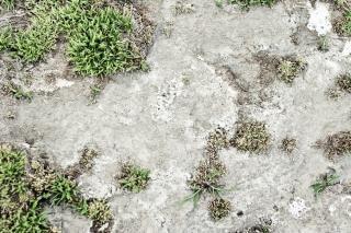 Powierzchnia gliny
