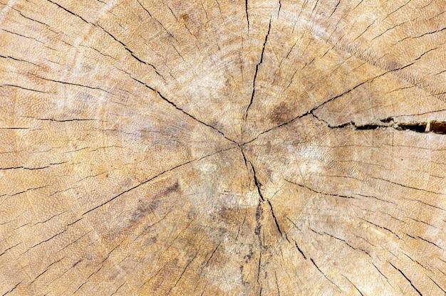 Powierzchnia starego drewna na naturalne tło