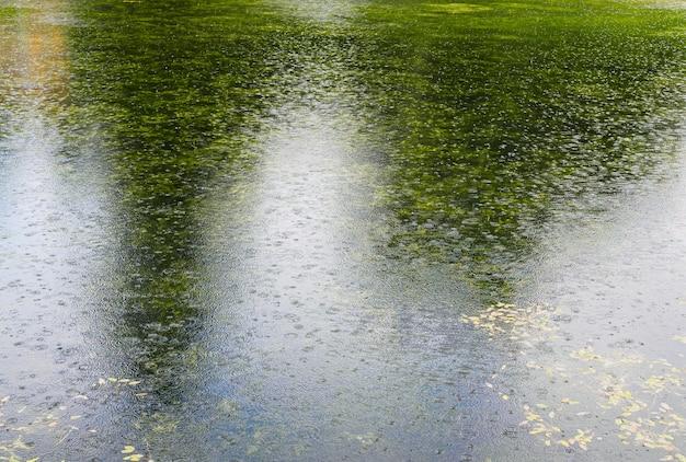 Powierzchnia stawu podczas deszczu z odbiciem drzew i powierzchni nieba podczas deszczu