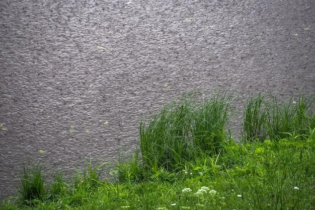 Powierzchnia wody pod kroplami deszczu