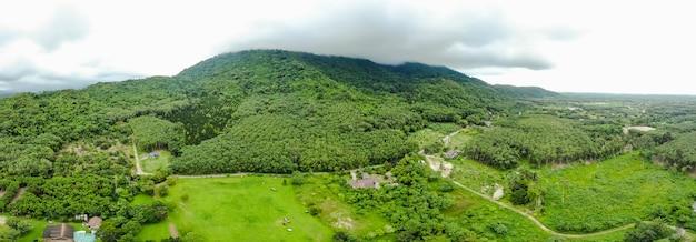 Powietrzna odgórnego widoku perspektywy krajobrazu zieleni góra i lis w deszczu sezonie