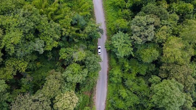 Powietrzny odgórnego widoku samochodowy jeżdżenie przez lasu na wiejskiej drodze, widok od trutnia