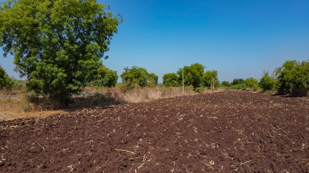 Powietrzny odgórny widok rolnictwa pole