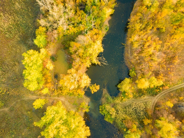 Powietrzny panorama krajobraz natura las z rzeką na zmierzchu