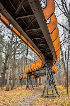 Powietrzny park ekotropowy drewniana ścieżka w lesie jesienią park ekotropowy szlak powietrzny