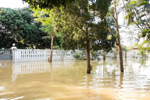 Powódź w domu. woda na podwórku i drzewo.