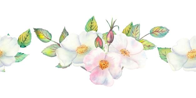 Powtórzenie letniej granicy poziomej z kwiatami akwareli i liśćmi dzikiej róży.
