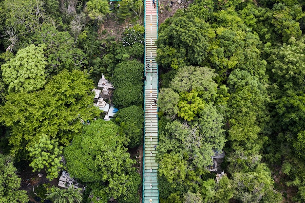 Powyżej długich schodów w dolinie tropikalnego lasu deszczowego w parku narodowym