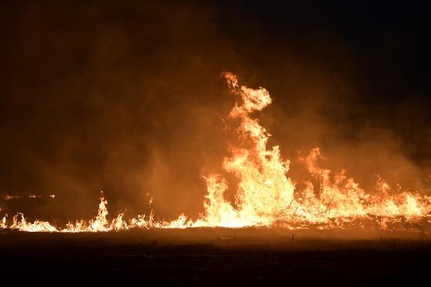 Pożar na polu w nocy.