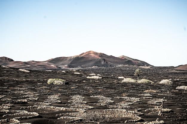 Poziome ujęcie pięknego krajobrazu na lanzarote w hiszpanii w świetle dziennym