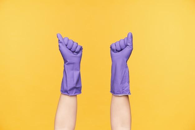 Poziome ujęcie uniesionych rąk pani ubranych w fioletowe gumowe rękawiczki na białym tle na żółtym tle, które zamierzają posprzątać dom w weekend