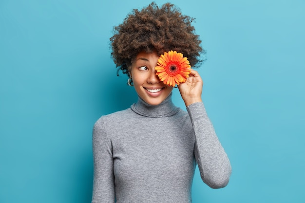 Poziome ujęcie wesołej kobiety zakrywa oko pomarańczowym kwiatem gerbera uśmiecha się przyjemnie sprawia, że bukiety noszą szary golf odizolowany na niebieskiej ścianie