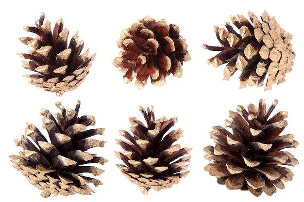 Pozłacana szyszka sosny - ozdoba świąteczna, izolowana na białym tle
