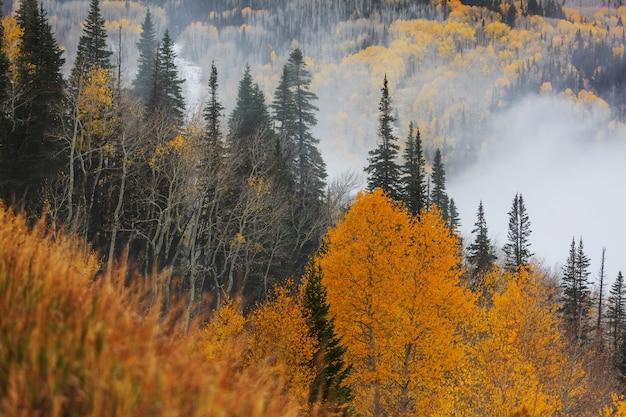 Późną jesienią w górach