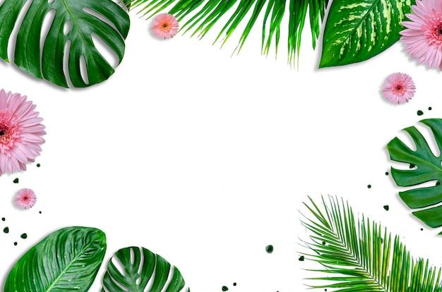Pozostawia białe tło z zielonymi liśćmi i płaskimi kwiatami