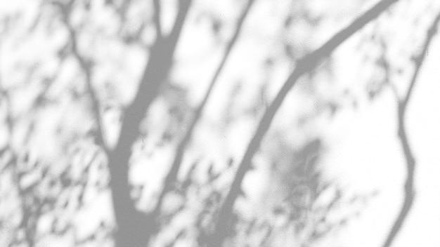 Pozostawia naturalny efekt nakładki cienia na białym tle tekstury