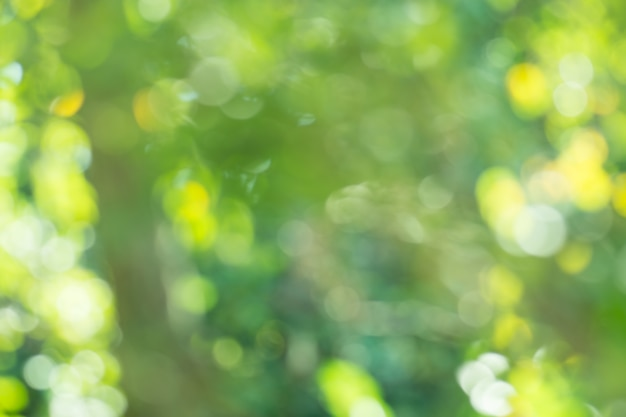 Pozostawia zielone tło zamazane pole