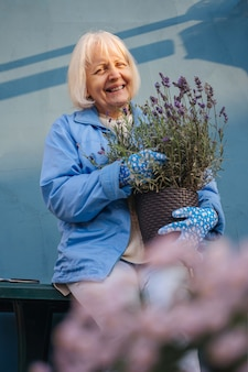 Pozytywna starsza kobieta z doniczkowymi kwiatami lawendy. uśmiechnięta starsza kobieta w zwykłych ubraniach