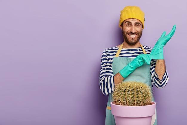 Pozytywny ogrodnik nosi gumowe rękawiczki, gotowe do przesadzenia kaktusa do nowej doniczki