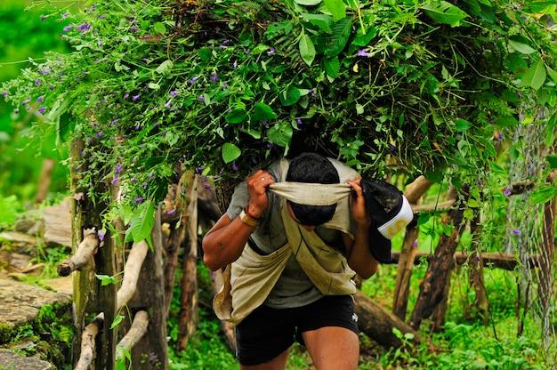 Praca na wsi w nepalu 3
