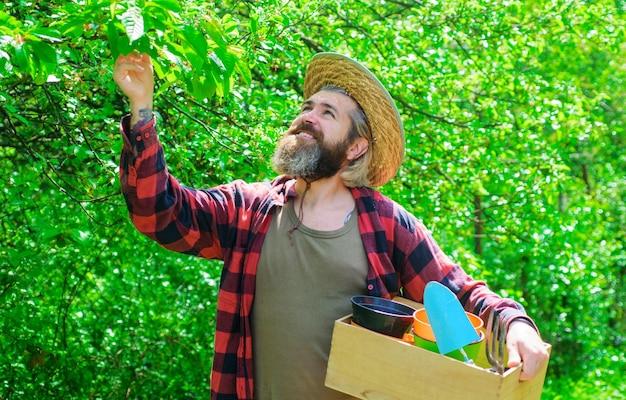 Praca ogrodnika. profesjonalny ogrodnik z narzędziami ogrodniczymi. szczęśliwy brodaty mężczyzna w ogrodzie. gospodarstwo ekologiczne.