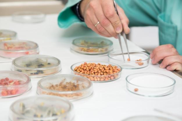 Praca z materiałem biologicznym w laboratorium.