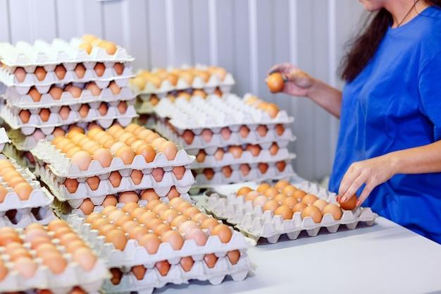 Pracownica sortuje jajka.