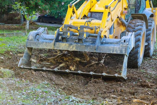 Pracownicy usług komunalnych zakłady komunalne sprzątają usunąć gałęzie drzewa i sprzątają