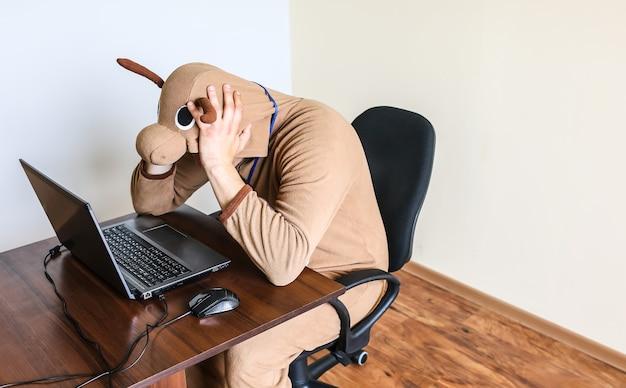 Pracownik biurowy w stroju cosplay krowy. facet w zabawnej piżamie zwierzęcej w pobliżu laptopa. parodia zdesperowanego menedżera. wypalenie zawodowe.