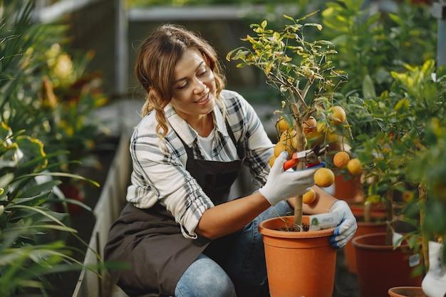Pracownik dba o kwiatostany. dziewczyna w białej koszuli. kobieta w rękawiczkach
