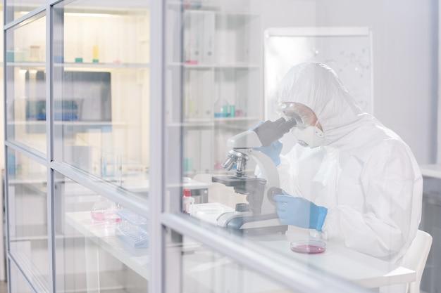 Pracownik laboratorium w ochronnej odzieży roboczej, siedzący w laboratorium naukowym i patrząc pod mikroskopem, badając wirusy i antidotum