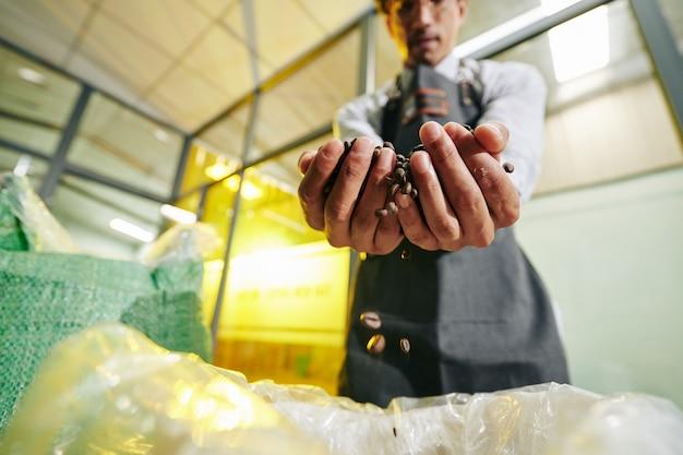 Pracownik palarni pakujący fasolę