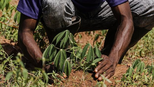 Pracownik wsi sadzenie w polu