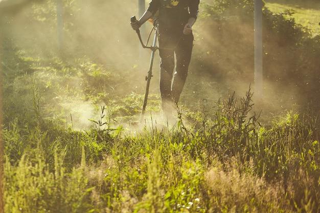 Pracuj, aby kosić podkaszarkę. proces koszenia wysokiej trawy za pomocą trymera. selektywna koncentracja na nieobrobionych tawa i rozproszenie cząstek ściętej trawy. wieczorne światła przedostają się przez mgłę