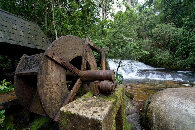 Prasa turbinowa w lesie