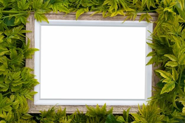 Prawdziwa drewniana rama pokryta roślinami i liśćmi z pustą przestrzenią na makietę lub tekst