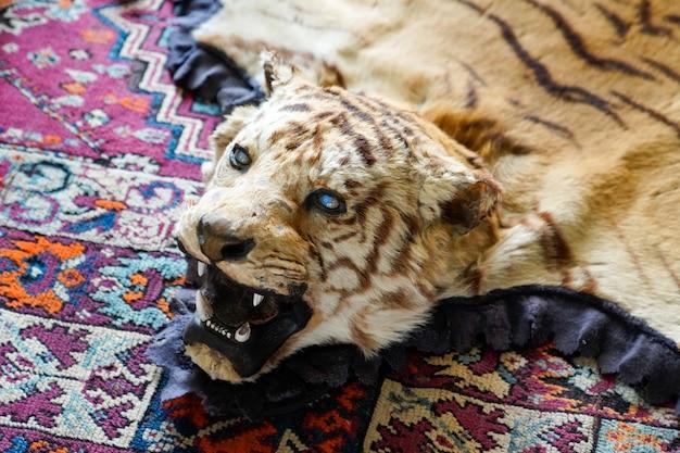 Prawdziwa głowa i dywan ze skóry trofeum tiger animal