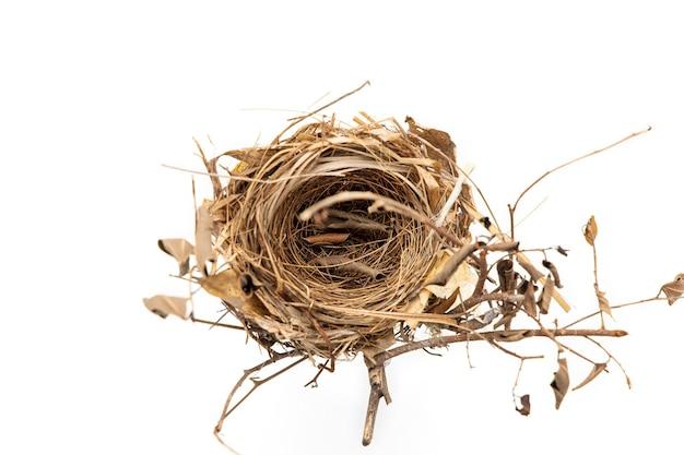 Prawdziwe gniazdo ptaka na białym tle.