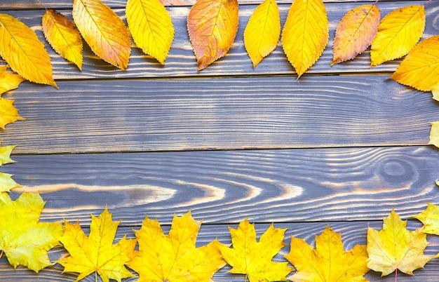 Prawdziwe jesienne liście leżące w kręgu na drewnianym tle. zdjęcie sezonowe. kolory żółty i zielony z teksturą. skopiuj miejsce. pocztówka z listopada.