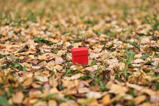 Prezenta pudełko w jesień liściach, kopii przestrzeń