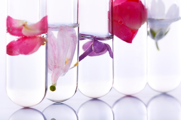 Proces tworzenia perfum