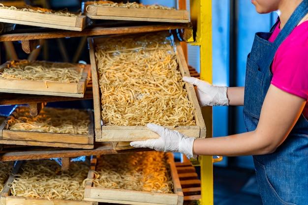 Produkcja makaronu. pudełka do odpoczynku makaronu. zakład produkcji technologicznej pracy przemysłowej. kobieta z surowym makaronem w rękach.