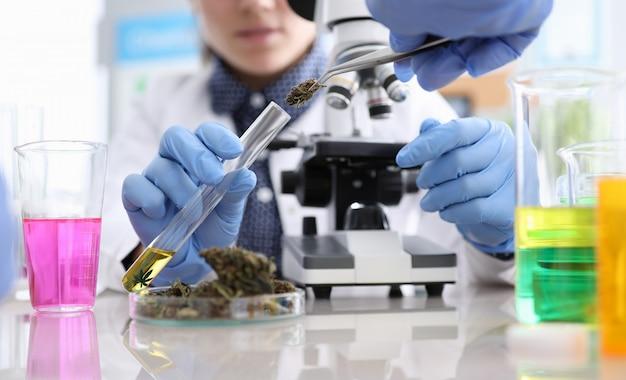 Profesjonalni chemicy przeprowadzający eksperyment