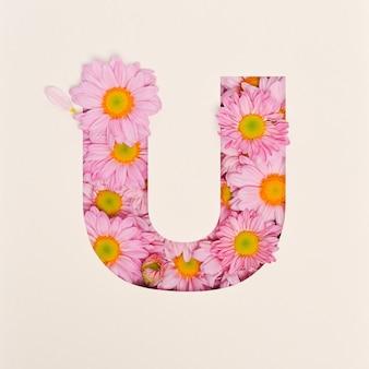 Projekt czcionki, abstrakcyjna czcionka alfabetu z różowym kwiatkiem, realistyczna typografia kwiatowa - u