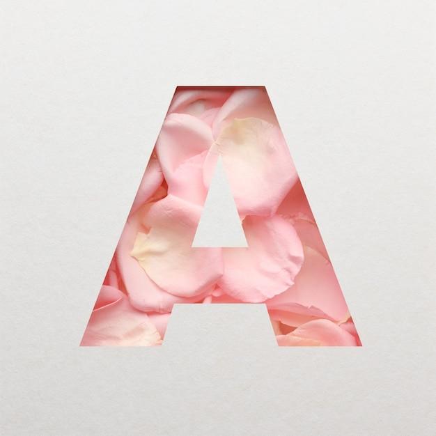 Projekt czcionki, abstrakcyjna czcionka alfabetu z różowymi płatkami róż, realistyczna typografia kwiatów - a