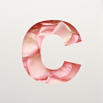 Projekt czcionki, abstrakcyjna czcionka alfabetu z różowymi płatkami róż, realistyczna typografia kwiatów - c.