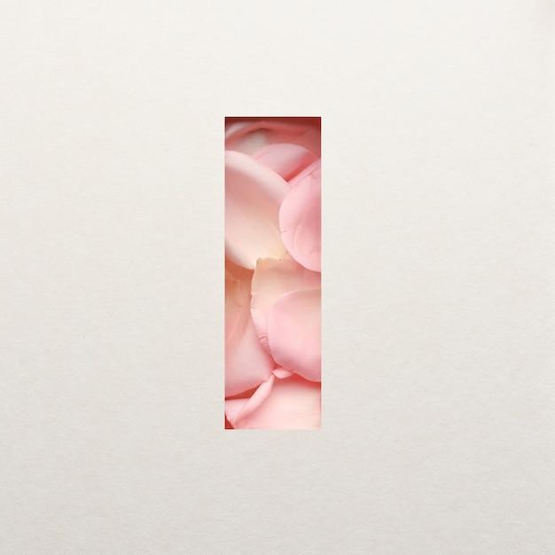 Projekt czcionki, abstrakcyjna czcionka alfabetu z różowymi płatkami róż, realistyczna typografia kwiatów - i