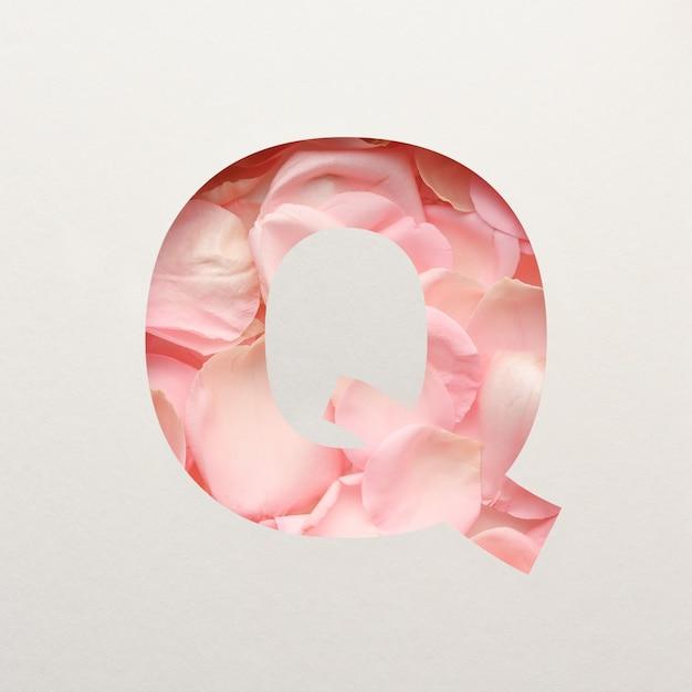 Projekt czcionki, abstrakcyjna czcionka alfabetu z różowymi płatkami róż, realistyczna typografia kwiatów - q