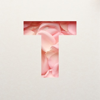 Projekt czcionki, abstrakcyjna czcionka alfabetu z różowymi płatkami róż, realistyczna typografia kwiatów - t